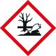 dangerprenviron